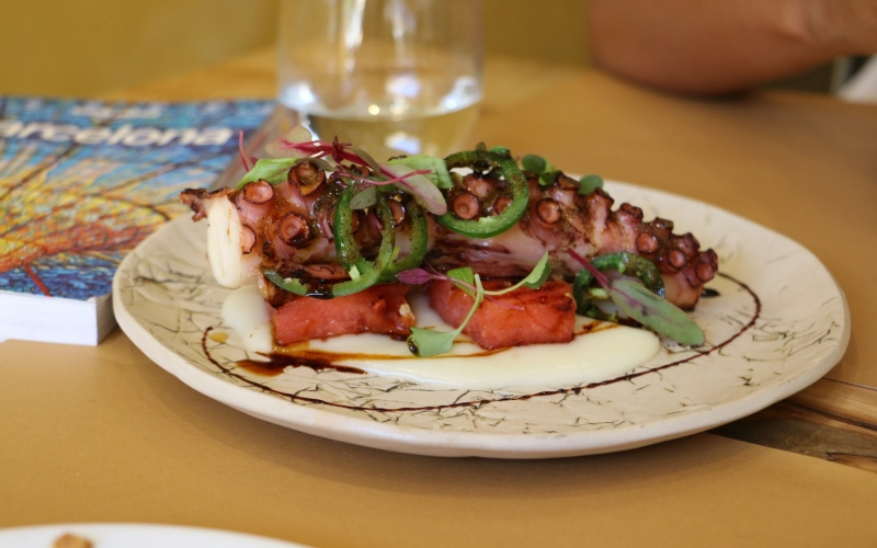 Barcelona Octopus Wide